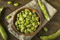 Raw Organic Fresh Green Fava Beans Royalty Free Stock Photo