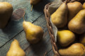 Raw Organic Green and Brown Bosc Pears Royalty Free Stock Photo
