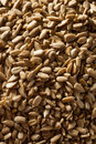 Raw organic hulled sunflower seeds in a bowl Royalty Free Stock Images
