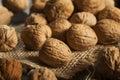 Raw organic whole walnuts ready to eat Royalty Free Stock Photos