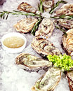 Raw oyster served ice lettuce sauce Royalty Free Stock Photography