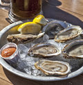 Raw Oysters Royalty Free Stock Photography