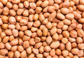 Raw Peanuts Background