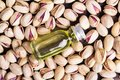 Raw pistachio nuts with oil Royalty Free Stock Photo