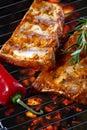 Raw pork ribs on grill Royalty Free Stock Photo