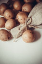 Raw potato Royalty Free Stock Photo