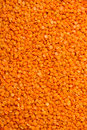 Raw red lentils filling frame Royalty Free Stock Image