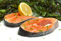 Raw Salmon Slice Royalty Free Stock Images