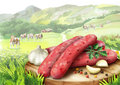 Raw sausage for barbecue with spices, lettuce and tomatoes on a plate in landscape with cows.