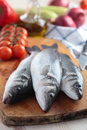 Raw sea bass Royalty Free Stock Image