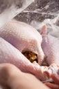 Raw Turkey in roasting bag