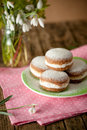 Raw and vegan version of traditional berliner dessert Royalty Free Stock Photography