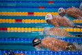 Rayan lochte usa barcelona – august in action during barcelona fina world swimming championships on august in barcelona spain Royalty Free Stock Image