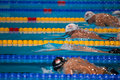 Rayan lochte usa barcelona – august in action during barcelona fina world swimming championships on august in barcelona spain Royalty Free Stock Photo