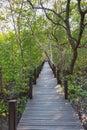 A wooden bridge in Golden Mangrove Field Thung Prong Thong