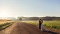 Rays of evening light cover road where wedding couple stands Royalty Free Stock Photo
