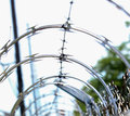 Razor wire an artistic view of Royalty Free Stock Photography