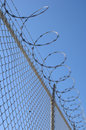Razor wire fence Stock Photography