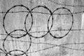Razor wire silhouette on concrete wall Stock Image