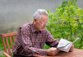Reading newspaper pensioner in garden Royalty Free Stock Photo