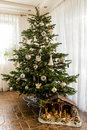Ready for christmas Royalty Free Stock Photo