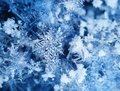 Real ice crystals after snowfall Royalty Free Stock Photo