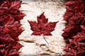 Real leaf canada flag on birch bark the image of the of constructed entirely out of genuine maple leaves and white from species Stock Photos