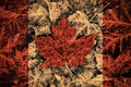 Real leaf canada flag the image of the of constructed entirely out of genuine maple leaves from species native to that country Royalty Free Stock Images