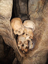 Real skulls indonesian cave human traditionnal where torajan people used to put their dead tanah toraja sulawesi indonesia Stock Image