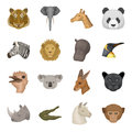 Realistic animals set icons in cartoon style. Big collection of realistic animals vector symbol stock illustration