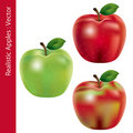 Realistic apples set