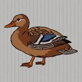 Realistic duck side view brown on a gray background Stock Photos