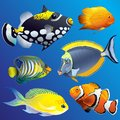 Realistic Exotic Marine Underwater Fauna Set