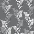 Realistic fern seamless pattern vector illustration. Detailed bracken fern vector, tropical forest.