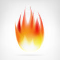 Realistic fire flame isolated vector
