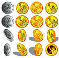 Realistic gold and silver coins Royalty Free Stock Photo
