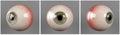 Realistic human eyeballs green iris pupil