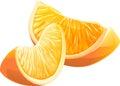 Realistic illustration slice of orange fruit. Royalty Free Stock Photo