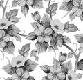Seamless pattern. Realistic isolated flowers. Vintage baroque background. Chamomile Rose. Wallpaper. Drawing engraving.