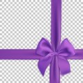 Realistic purple bow and ribbon isolated on transparent background. Template for brochure or greeting card. Vector