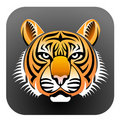 Realistic Tiger's face Royalty Free Stock Photo