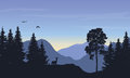 Realistic vector illustration of mountain landscape with forest,