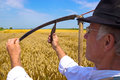 Reaper man is preparing to harvest wheat photography Stock Images