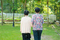Rear view asian old mother and senior daughter walking at outdoo of s s holding hands outdoor park Stock Photo