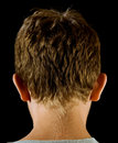 Rear view, boy's head Royalty Free Stock Photos