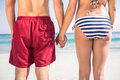 Rear view of couple holding hands at the beach on a sunny day Royalty Free Stock Photo