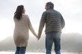 Rear view of couple holding hands on beach Royalty Free Stock Photo