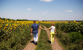 Rear view of couple walking in summer countryside holding hands Stock Photo