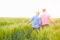 Rear view of romantic couple walking in field holding hands the countryside Stock Photos