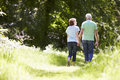 Rear View Of Senior Couple Walking In Summer Countryside Royalty Free Stock Photo